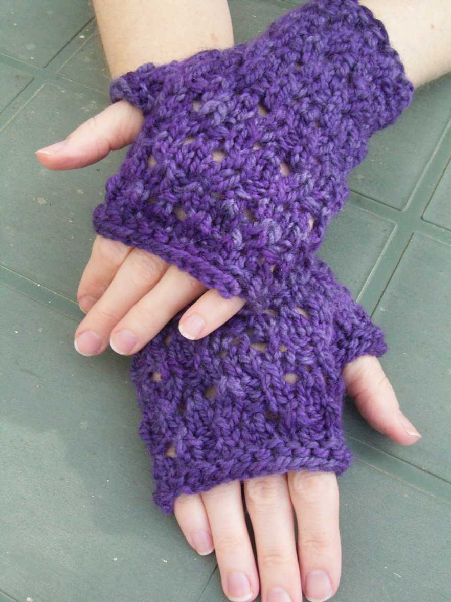 Bilberry Blackberry Mitts 008 b